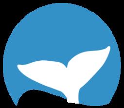 D Gray Whale Whale Tales Sponsor 5000
