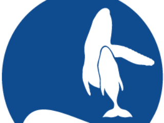 1 Kohola Whale Tales Sponsor 20000