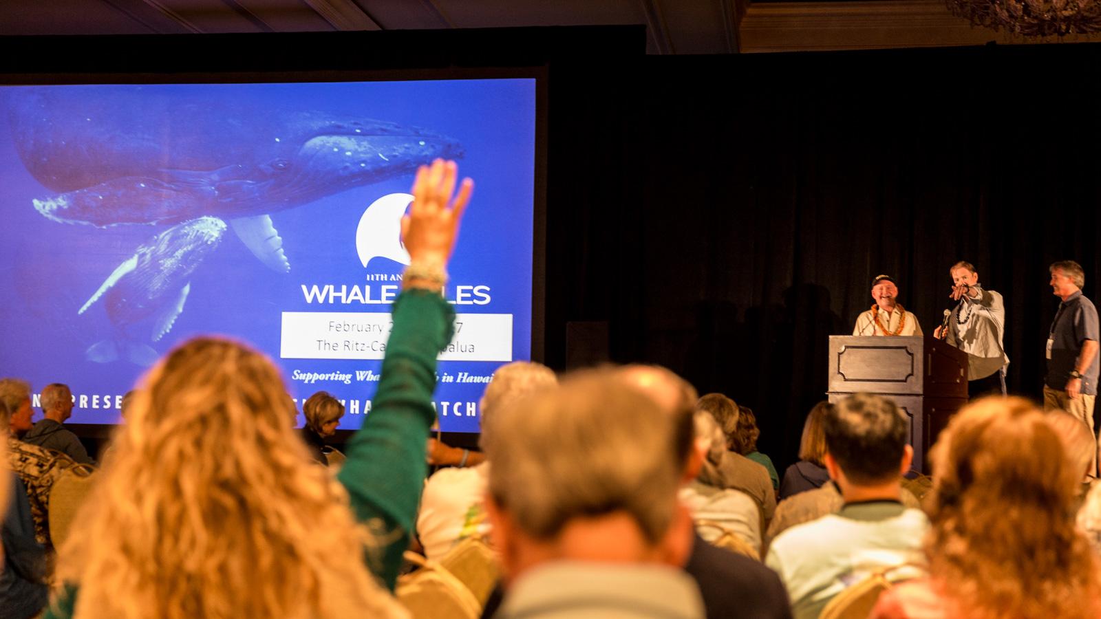 Whale Tales 2017-3532-2_20170226_web_berkowitz