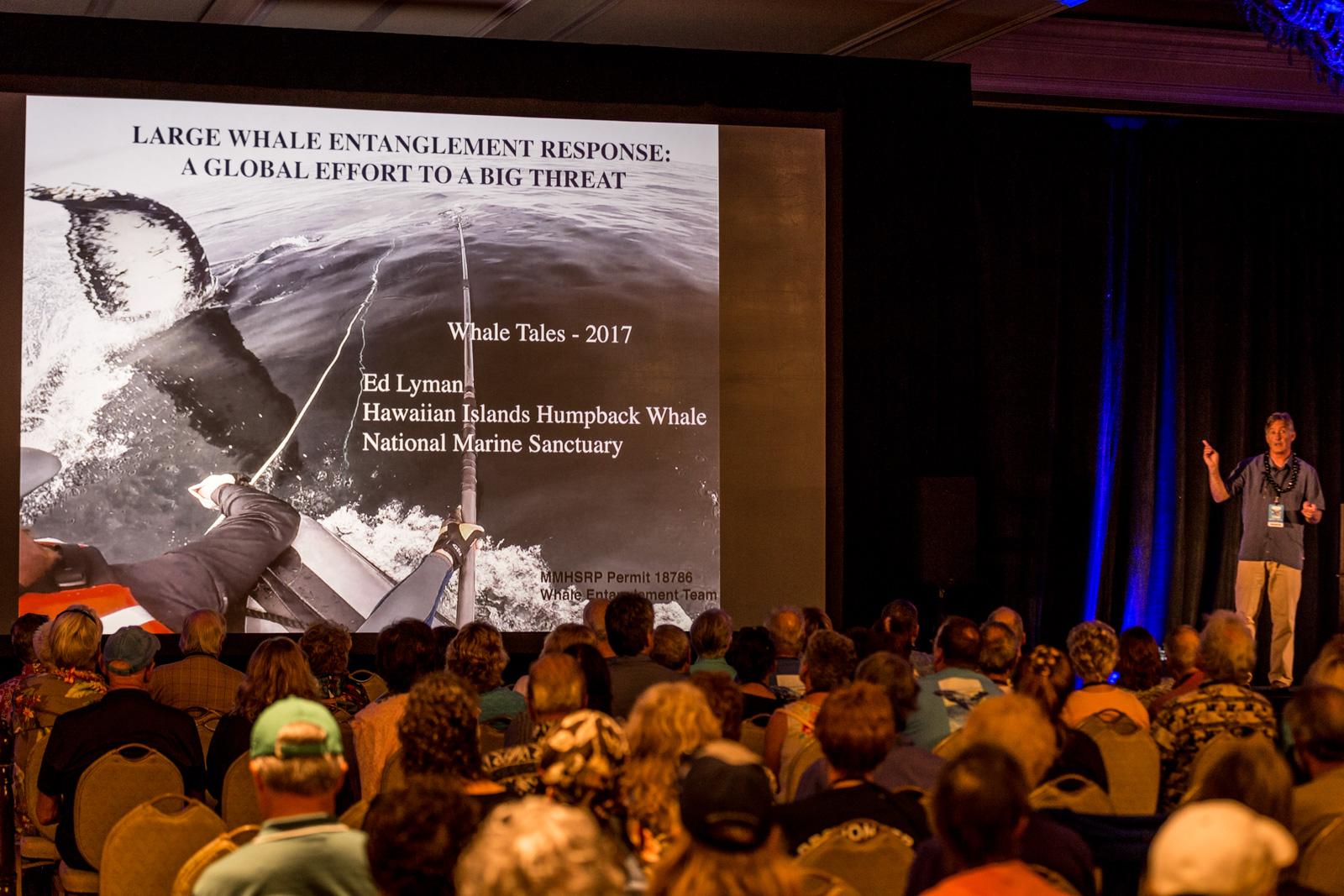 Whale Tales 2017-3703-2_20170226_web_berkowitz