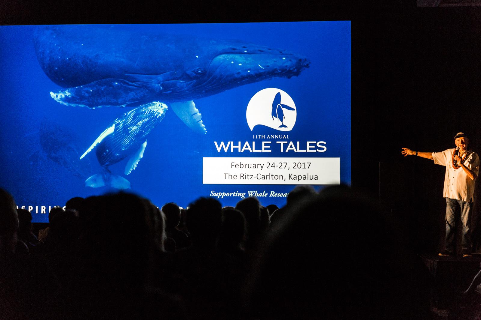 Whale Tales 2017-3847-2_20170226_web_berkowitz